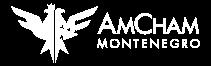AMR Global Advisors